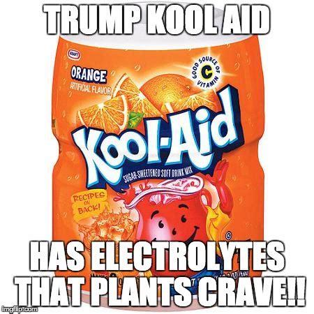 Kool Aid Meme - trump kool aid imgflip