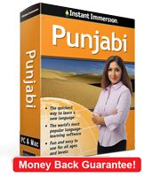 rosetta stone punjabi learn punjabi with instant immersion