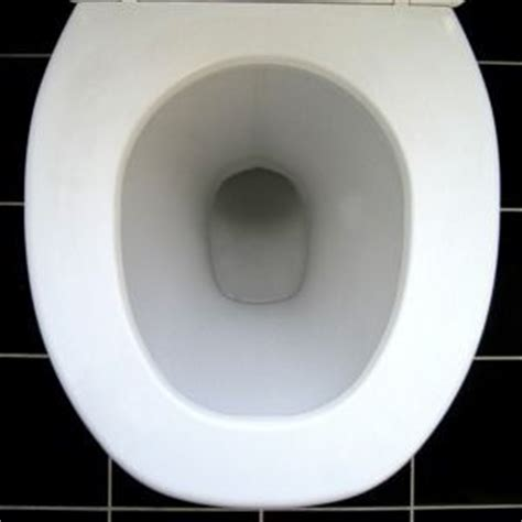 Stool Moving In Toilet by Probiotics Solved Problem Of Bowel Movements That Clog The