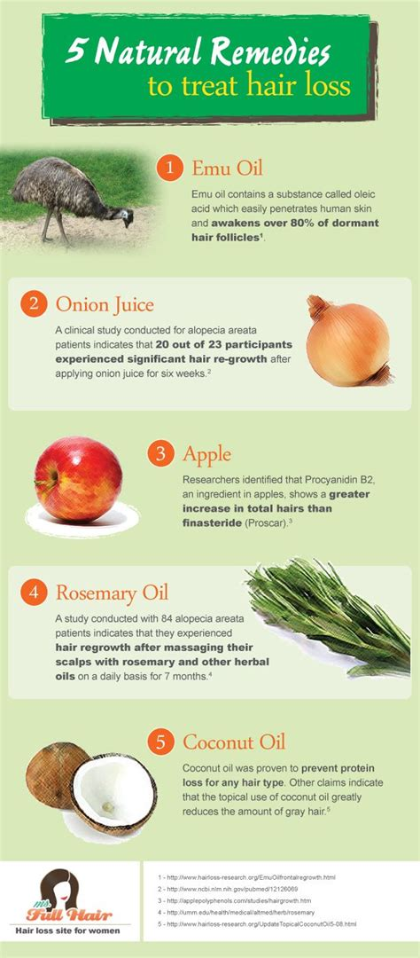 infographic  popular natural home remedies  treat hair
