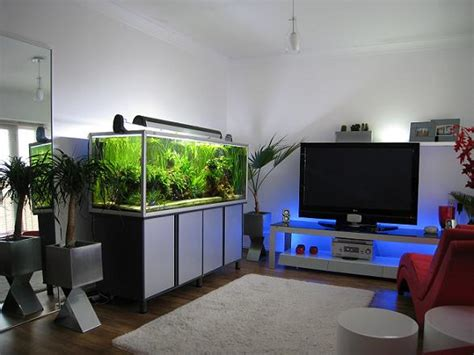 modern aquarium archives modern aquarium design for reef aquaria and