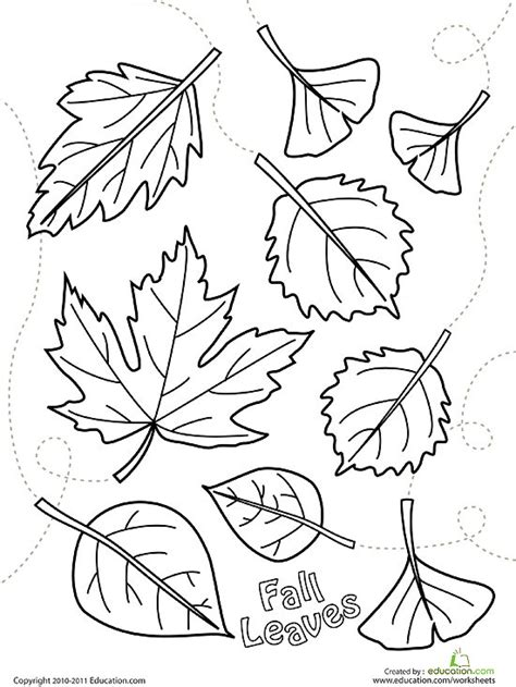 Coloring Pages For Fall To Print by Crammed Fall Coloring Pages To Print Printable 7416