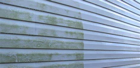 how to clean siding on house mildew remove mold from siding of house 28 images mold mildew
