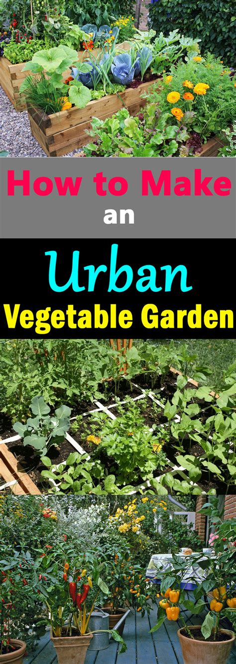 how to make an vegetable garden city vegetable garden