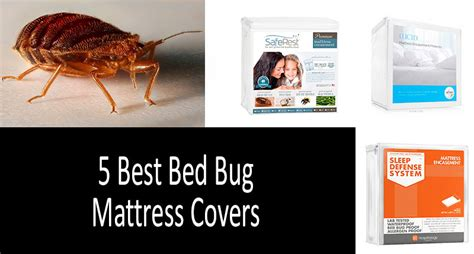 best mattress protector for bed bugs top 5 best bed bug mattress covers