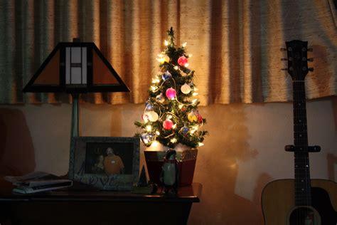 tiny christmas tree derek broox com