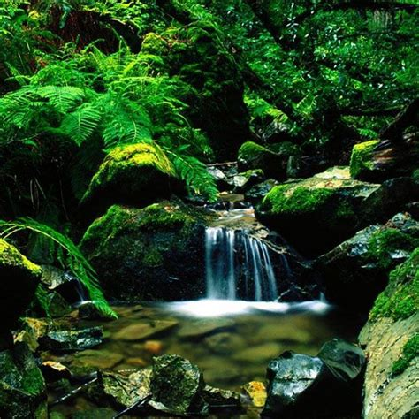 themes mobile waterfall related pictures tags waterfalls live wallpaper mobile