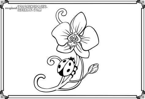 ladybug coloring pages for preschoolers simple ladybug coloring sheets valentine cards page