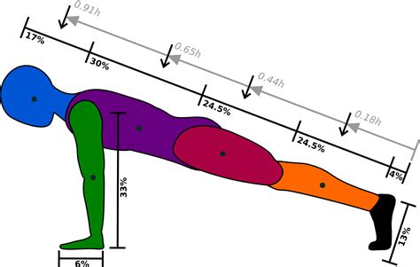 push up diagram stenson student of plasma physics and the world at large