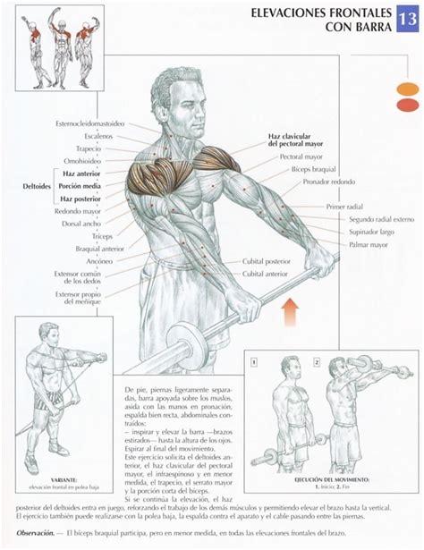 imagenes de ejercicios para workout los 10 mejores ejercicios de hombros el blog de