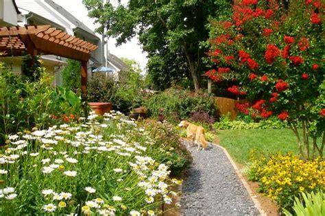 home garden design inc dog friendly garden design hgtv