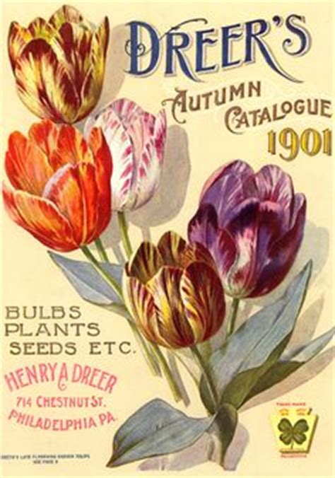 gardening vintage flowers amp seed packets on pinterest