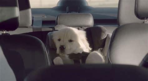go commercial puppy subaru commercial autos post