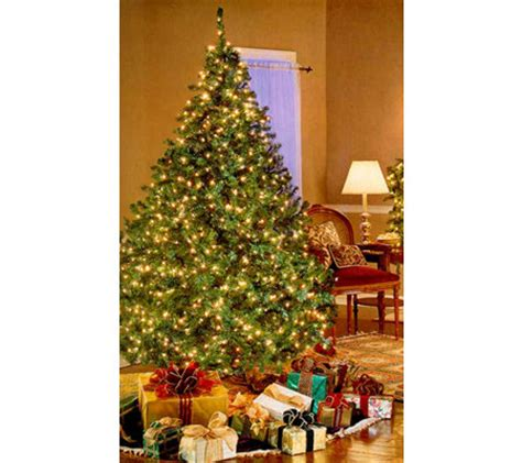 bethlehem lights pre lit christmas tree qvc com