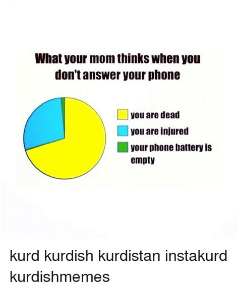 Answer Your Phone Meme - what your mom thinks when you don t answer your phone l