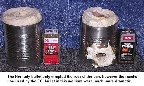 17 best images about shells 17hmr for groundhogs huntingnet forums
