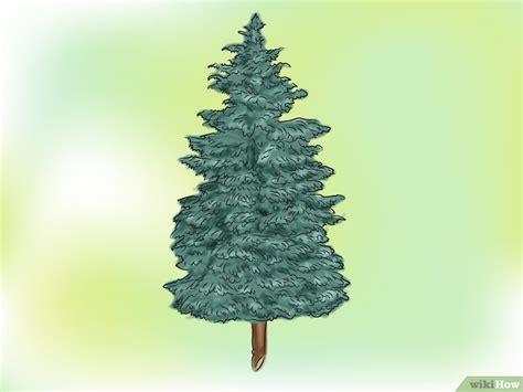 vaso per albero di natale vaso base per albero di natale disegni di natale 2019