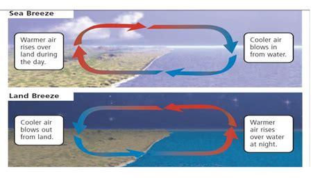 diagram of sea and land mrs stuartscience 2017 2018 daily acivities