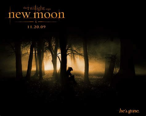 Amazing Moody Church Pastor #4: Bella-New-Moon-bella-swan-17516188-1024-819.jpg