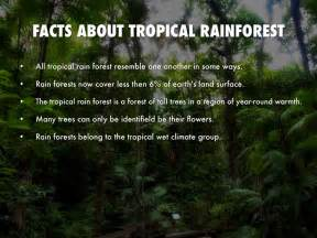 Tropical Rainforest Plant Facts - earth biomes by jayvon whitfield