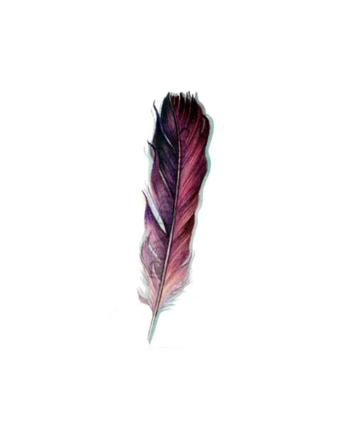 watercolor tattoo feather ombre feather painting 2