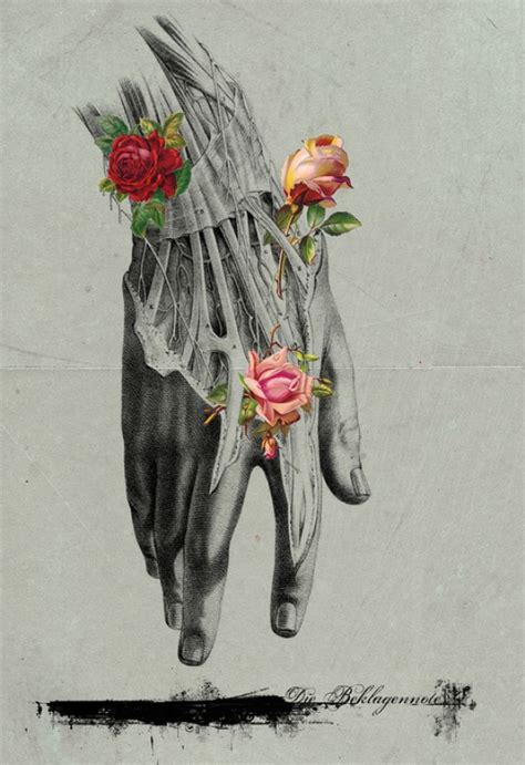 michele parliament digital collages anatomical illustrations  natural forms