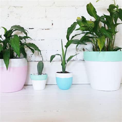 vasi per piante da interno vasi arredo interno vasi per piante vasi arredo