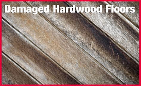 hardwood floor drying finding that quot sweet spot quot in heat drying during