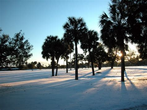 White Christmas Dream Becomes Reality for the Lower RGV, 2004!