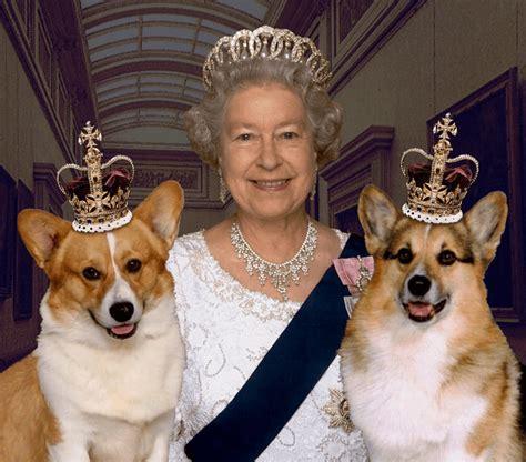 queen elizabeth corgi uk queen in hideout over pedophile jimmy savile why