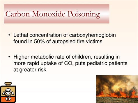 Carbon Monoxide Poisoning From Fireplace by Ppt Smoke Inhalation Powerpoint Presentation Id 394256