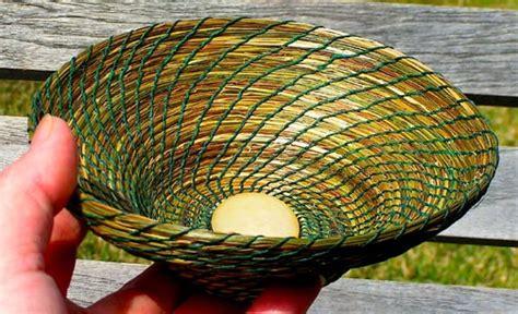 sweetgrass hierochloe odorata ethnobotanical web page