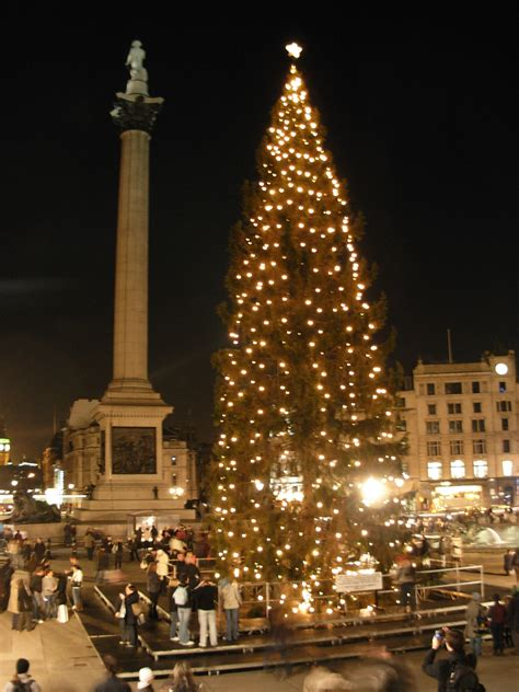 файл trafalgar square christmas tree9 jpg википедия