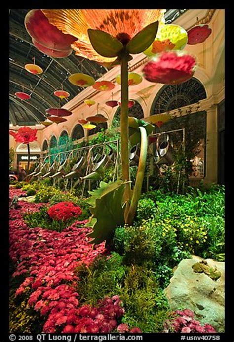 picturephoto giant watering cans  indoor garden