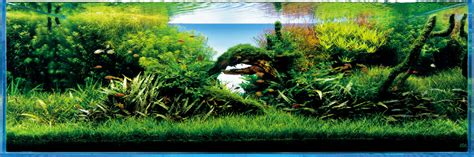 takashi amano aquascaping techniques ada nature aquarium founder takashi amano