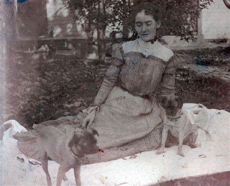 pug vintage 31 best images about pugs vintage on photos tricycle and antiques