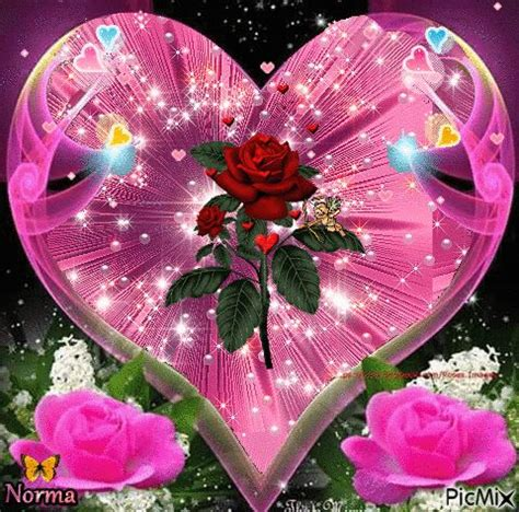 imagenes variadas 1000 images about roses on pinterest la web glitter