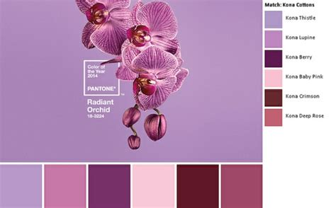 le für wand schlafzimmer farbe lavendel
