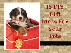 Present Ideas For Your - 16 diy gift ideas for your pets