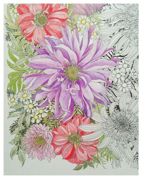 floribunda a flower colouring 1780677766 49 best floribunda a flower coloring book images on coloring books coloring pages