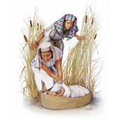 Breastfeeding And Judaism Why Moses Mother Didnt Put Bottles Into