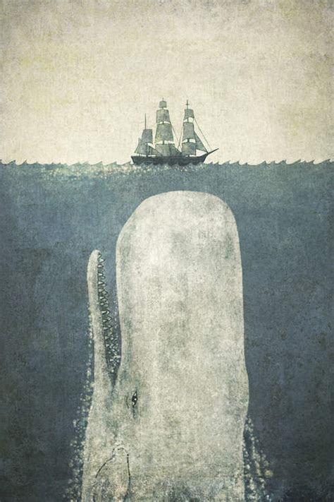 terry fan the whale print white whale canvas print by terry fan icanvas