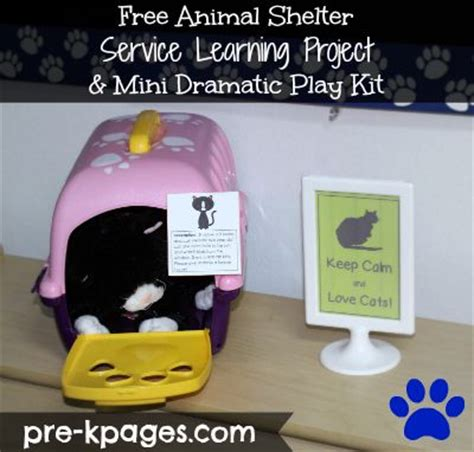 puppy preschool near me best 25 pet shelter ideas on shelter dogs adoption shelters near me and