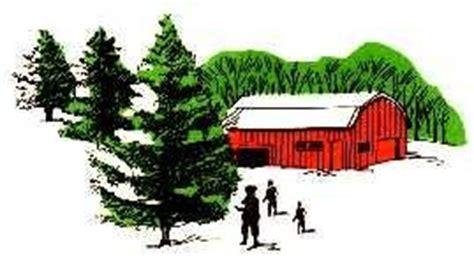 christmas trees victor christmas tree farm home