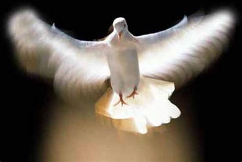 Holy Spirit As The Comforter by Contemplations