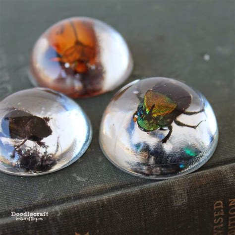 with resin doodlecraft beetles in resin jewelry