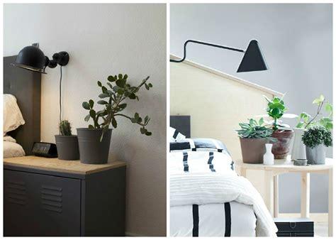 plante verte dans une chambre à coucher plantes d int 233 rieur d 233 corez avec des plantes vertes