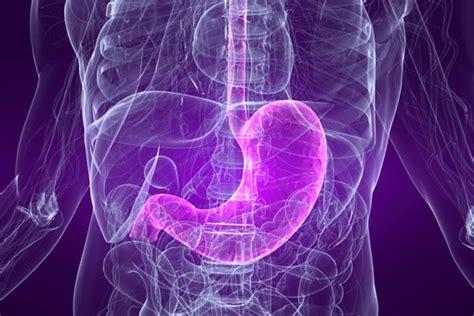 alimentazione ulcera gastrica ulcera peptica cause sintomi diagnosi terapia e
