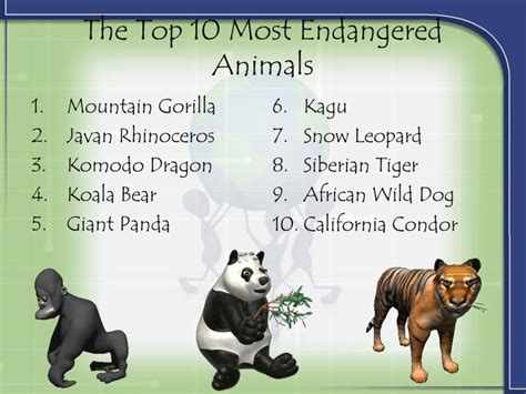 PPT - Top 10 Most Endangered Animals PowerPoint ...