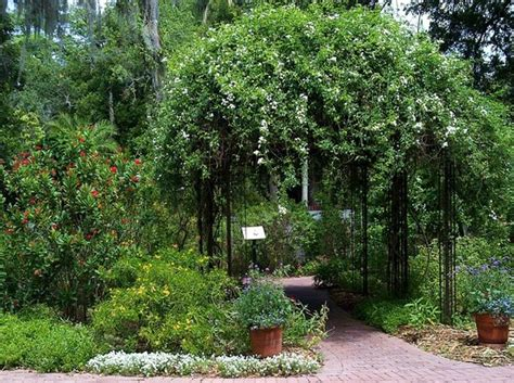Selby Botanical Garden Selby Botanical Gardens Sarasota All You Need To Before You Go With Photos